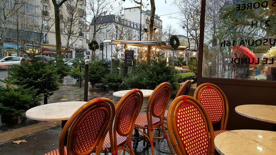 Terrasse de Paris Paris ❤ Noel2015 Capture The Moment Enjoying Life Fleurs Sapin De Noël
