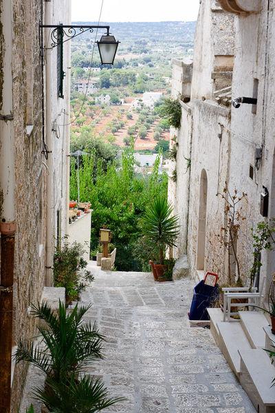 Alley of Cisternino in Puglia (Italy) Alley Alleyway Apúlia Brindisi Cisternino Fasano Italy Itria Ostuni Puglia Road Salento Street Valley Village