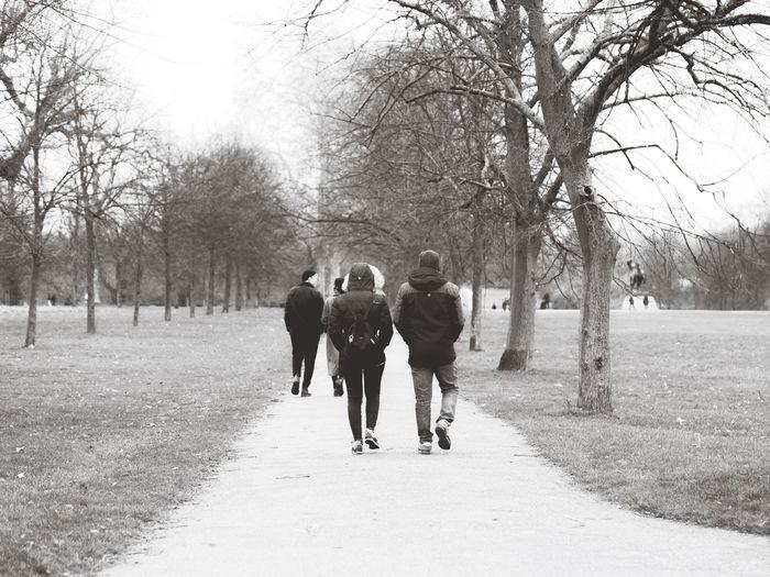 Hyde Park Park