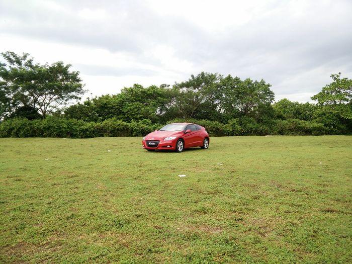 陪了我四年的小红... EyeEm Best Shots Kampar OPPO OppoFind7a Utar Eyeme Best Shot Transportation Car Nature Mode Of Transport Land Vehicle Travel Tree No People Cloud - Sky Outdoors Day Sky