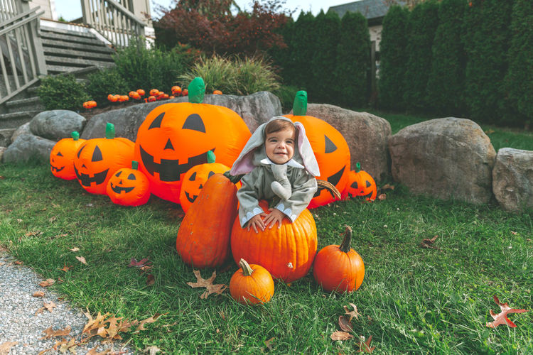High angle view of girl and pumpkins on field