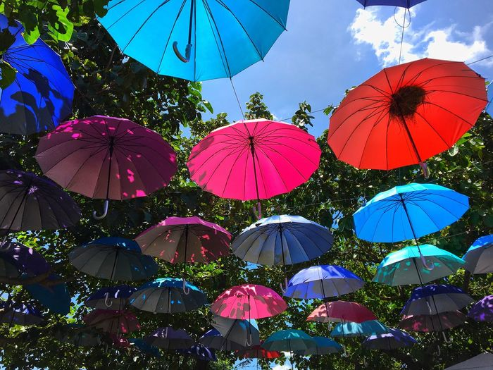 Low Angle View Of Colorful Umbrellas Hanging Against Trees
