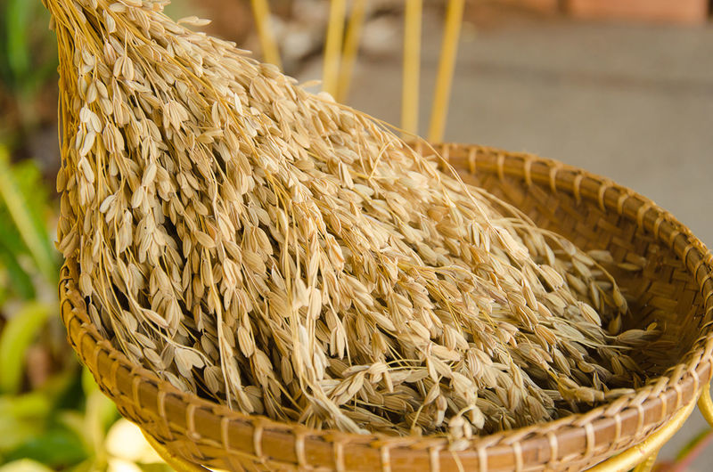 Close-up of cereal plants in wicker basket