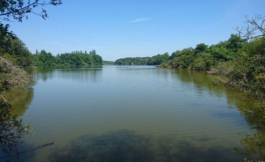 Nature Landes Blak Pond