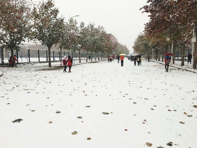下雪天❄️……你在哪?