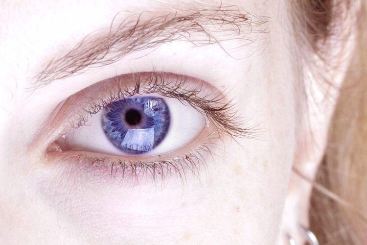 Janela Azul Eyeblue Window