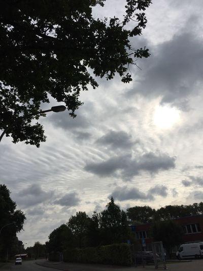 272/365 Schicke Wolken Bilsbekblog Eyeemgermany Photo365 Sorcerer86 Photooftheday Iphone6 IPhoneography Eyeempinneberg