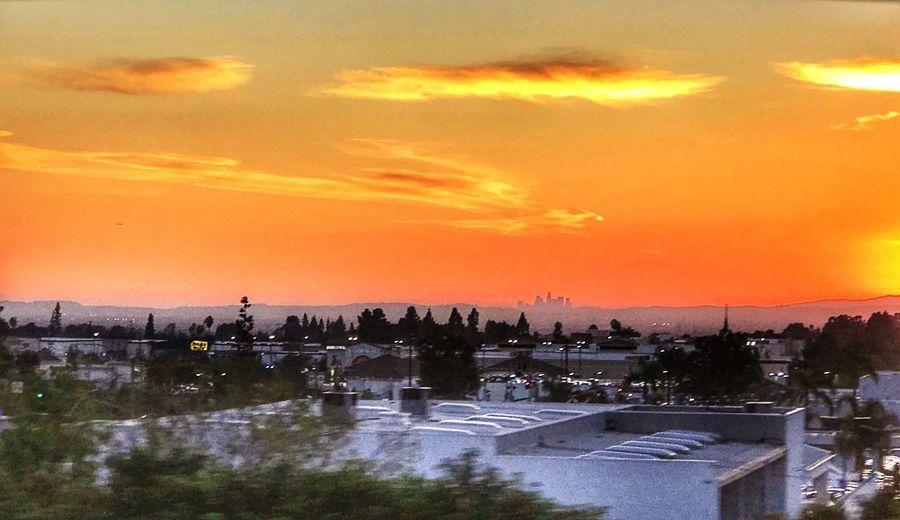 Sunset IPhone 7 Plus Sky DOWNTOWN LA SKYLINE SUNSET