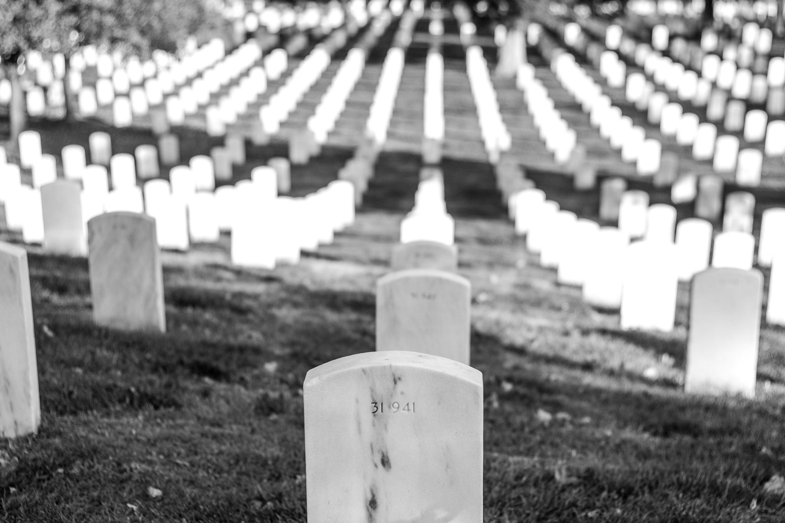 memorial, no people, close-up, war memorial, outdoors, day