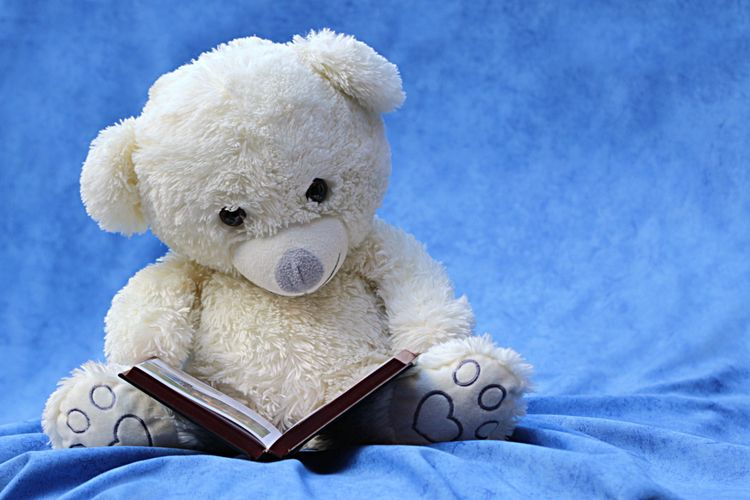Close-Up Of Teddy Bear With Book On Bed