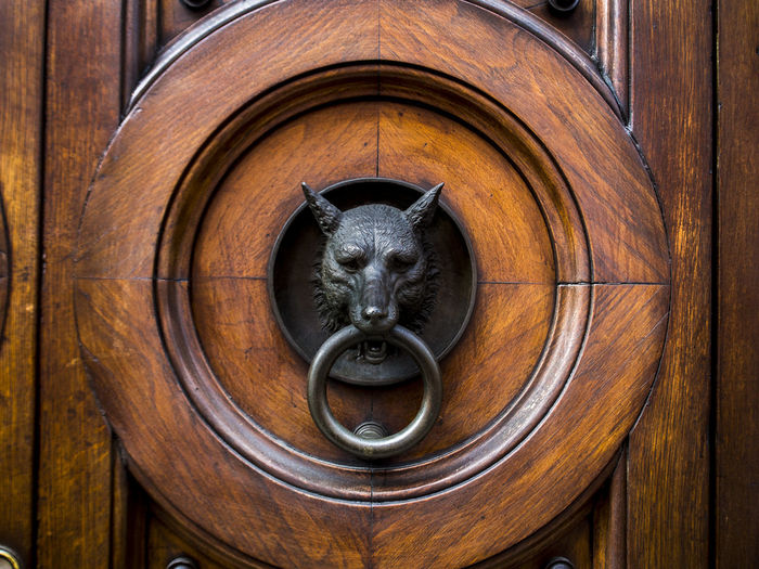Iron ring Architecture Building Exterior Circles Pattern Close-up Day Door Door Knocker Iron Ring Lion - Feline No People Ring Wood - Material