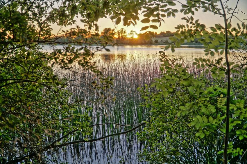 lake at sunset Also In 16 Bit HDR Beauty In Nature Floating On Water Lake Nature Outdoors Scenics - Nature Tranquil Scene Tranquility Water