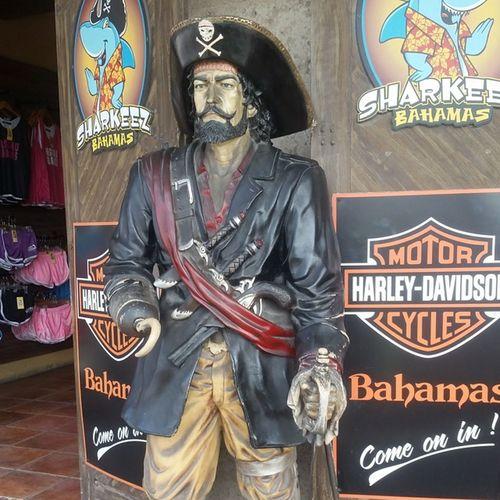 Arragh you a Pirate ? Island Likeafreakintourist ,Wheresmyrum ?