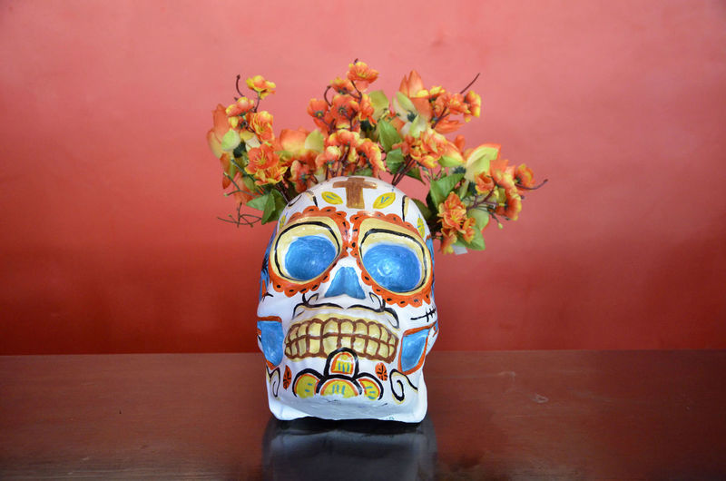 Skull With Flowers On Table Against Red Wall