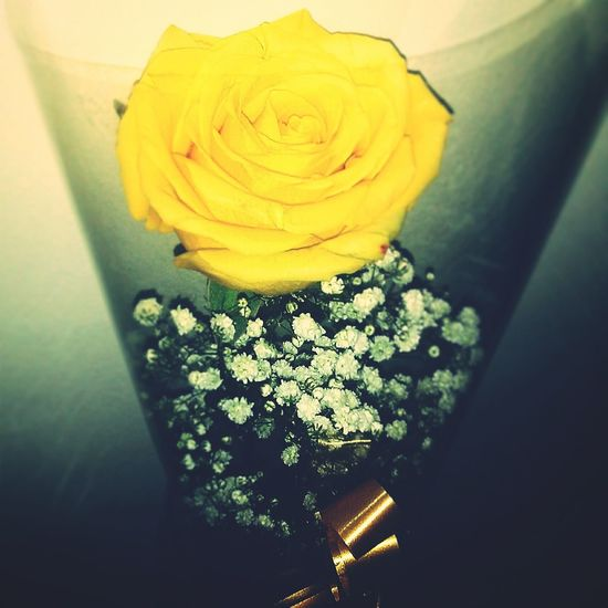 Rouse Yellow Flower Lovefriends