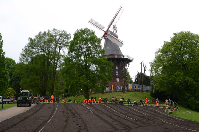 Hard At Work Orange Overalls Outdoors People Planting Flowers Real People Team Work Traditional Windmill Windmill Workgroup ın The Park