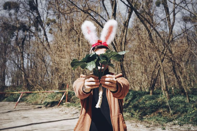 Nature Plant Holding One Person Easter Bunny Bunny  Bunny Ears  Forest Forest Walk Tree Men Celebration Mask - Disguise Mask Animal Imitation Representation Costume Funny Wearing Obscured Face