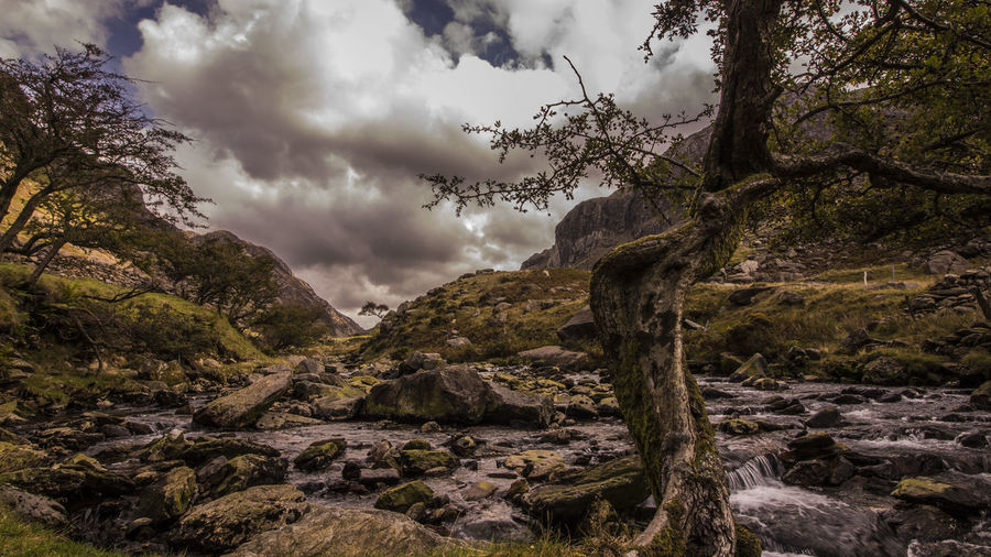 Beauty In Nature Cloud - Sky Day Landscape Mountain Nature No People Outdoors Scenics Sky Snowdon Snowdonia Snowdonia National Park Tranquil Scene Tranquility Tree EyeEmNewHere Spooky Atmosphere Spooky Trees Valley View Mystical Magical Place