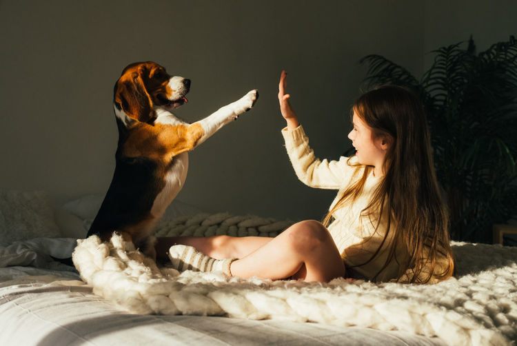 Smiling girl giving high-five to dog on bed at home