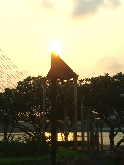 Morning Morning Sky, Park Sun And Sky : Sunlight,Rama8th Bridge,Morning,Lightingand Reflect,