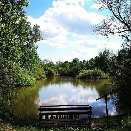 Fishing Lake Hungary Zala
