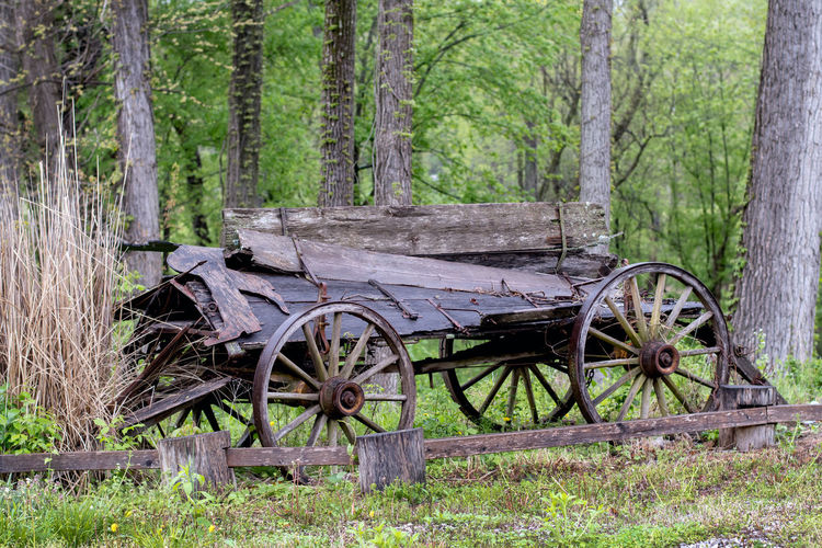 Vintage wood wagon is falling apart in a rural Indiana field, but still stands as a part of recent travel history Countryside Scenic Nature Rusted Field Transportation Aged Worn Antique Vintage Life Old Travel Grassland Forests Wooden Country Classic Cart Relic Farm View Outdoor Meadow Decay Scenery Scene Site Traditional Rural Wheel Landscape Wagon  Wood Rusting Historic Wood And Metal Wheels Falling Apart Bad Shape Unused History Past Beauty In Nature WoodLand Abandoned Growth Wagon Wheel Outdoors Grass Land