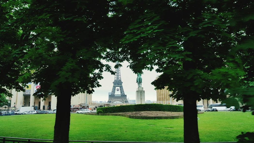 Tree Architecture Green Color Built Structure Outdoors Day Building Exterior Nature Sky Eiffel Tower Eiffel Tower♥ Eiffel_tower  Paris Paris, France  Paris ❤ Paris Je T Aime France🇫🇷 France Igparis Ig_paris Igfrance Ig_france Photography Pic Photo