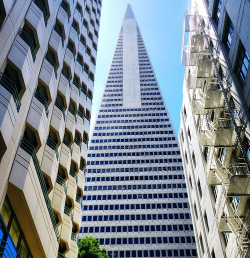 Architecture Travel Destinations Building Exterior Outdoors Low Angle View No People Skyscraper City Built Structure Day Transamerica Pyramid EyeEmNewHere EyeEmNewHere