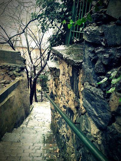 Yağmurlu bir pazar sabahı, yürümek bu sokaklardan.. Yağmur Sonrası Erken Sabahlar Merdiven Sokaklar Sakinlik Street
