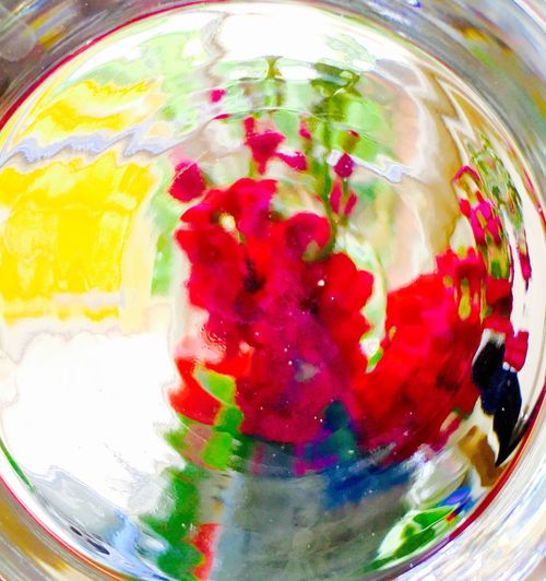 Flowers through ornamental glass window/Expressionism/Impressionism
