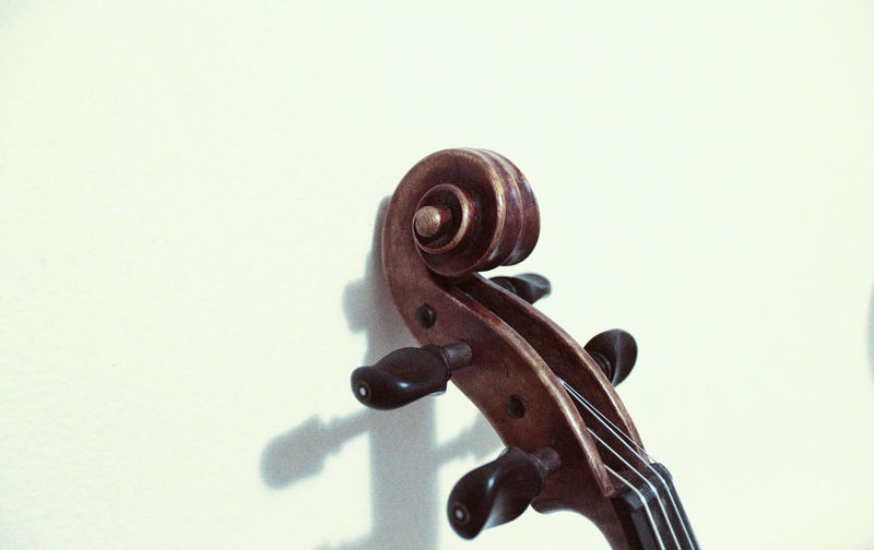 Violin details Classical Music Curl Music String The Week On EyeEm Wood Arts Culture And Entertainment Classical Music Close-up Copy Space Detail Instrument Music Musical Instrument Musical Instrument String Musician No People String Instrument Studio Shot Violin Violin Curl Violin Strings Violinist White Background Wood - Material
