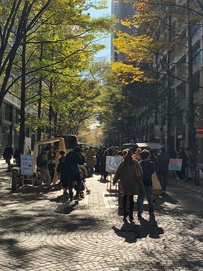 Marunouchi street market/陽だまりの街 Tree Street Walking Real People Men Built Structure Architecture Building Exterior City Full Length Outdoors Lifestyles Women Large Group Of People Day People Adult IPhoneography IPhoneX