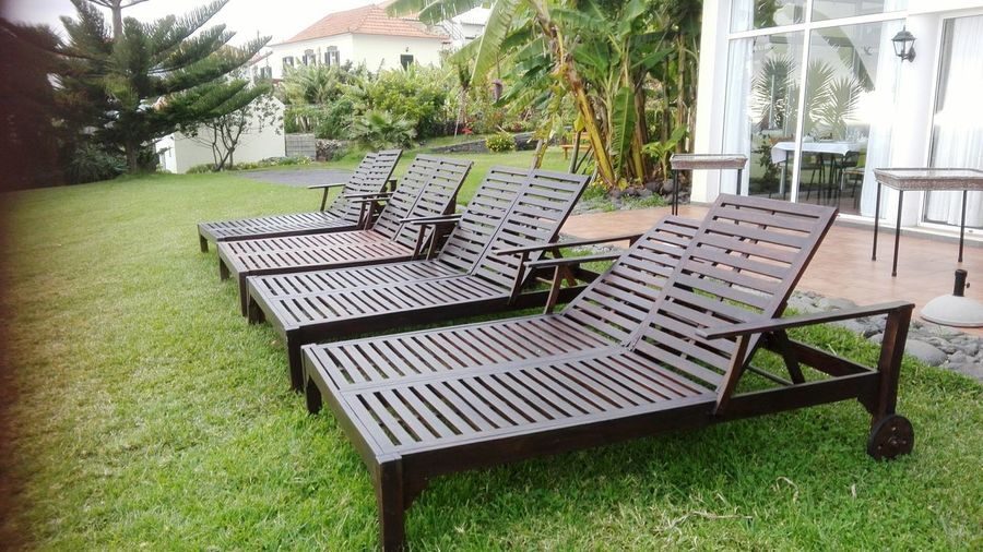 Sunbeds without cushions on a lush green meadow Meadow Relaxing Vacations Resting Tree Furniture Relaxation Chair Table Seat Grass Sun Lounger Canopy Outdoor Cafe Deck Chair Terrace Outdoor Chair Lounge Chair Backyard Domestic Garden Folding Chair Park Bench