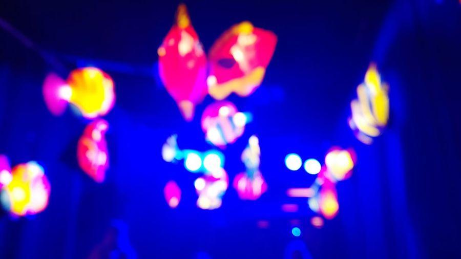 Blue Illuminated Indoors  No People Close-up Night Blurry Blurry On Purpose Indoors  First Eyeem Photo EyeEmNewHere Pollen Outdoors Freshness Petal Flower Head Growth Red Studio Shot Egg Yolk Indoors  Indoors  Indoors  Indoors  Indoors  EyeEmNewHere