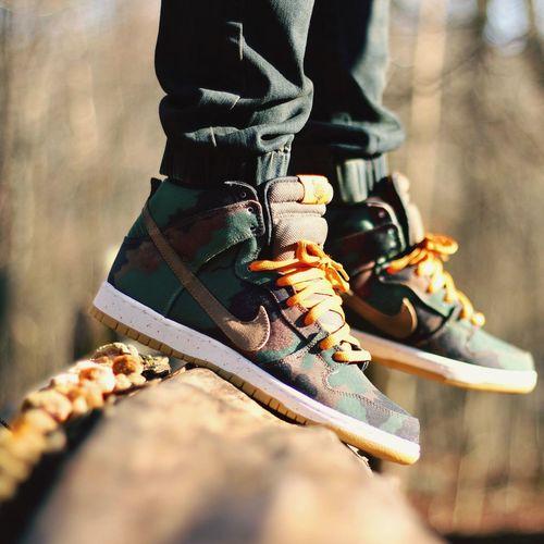510 Nike Nikesb Sneakers Sbcollector Complexkicks Stashedboxes Kicksonfire Fashion Sbology