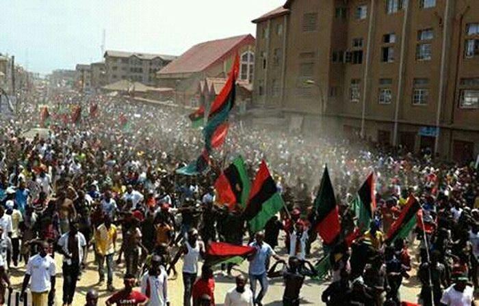 Showcase: December JelloBiafra Protesting Nigerians Igbo