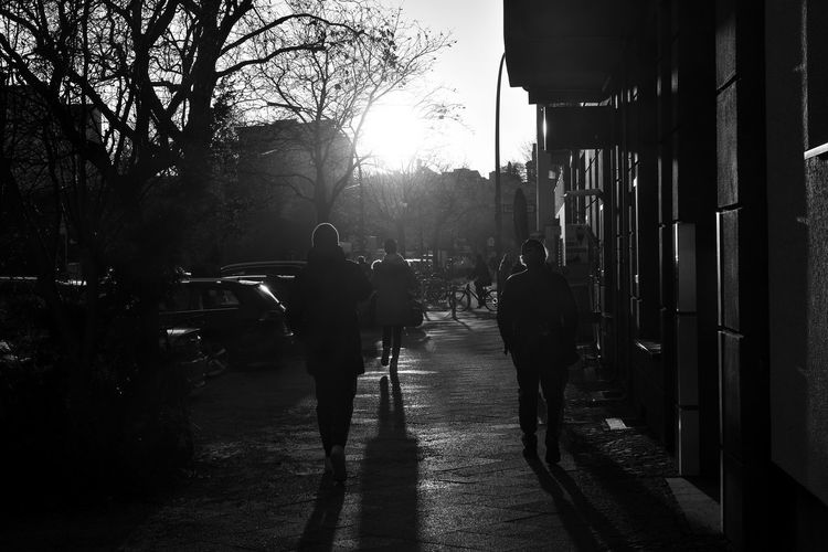Rear view of silhouette people walking on street in city