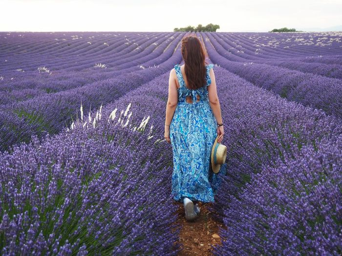 Full length of woman standing by purple flowers on field