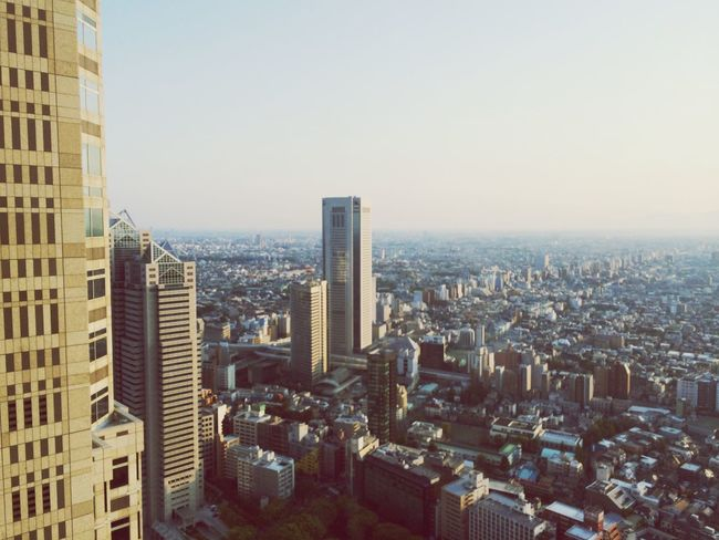 Tokyo metropolitan area