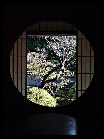 雲龍院 悟りの間「悟りの窓」 The Purist (no Edit, No Filter) Window Temple Taking Photos
