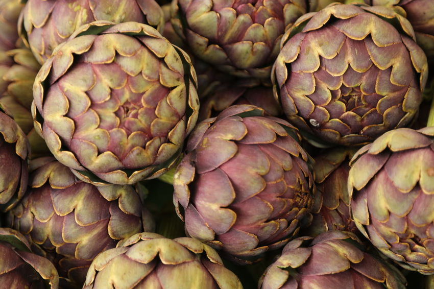 Abundance Artichoke Artichokes, Buying, Closeup, Eating, Farm, Farmer, Farmer's, Farmers, Food, Foods, Fresh, Green, Healthy, Lifestyle, Local, Market, Organic, Produce, Purple, Raw, Seasonal, Vegetable Backgrounds Close-up Day Food Food And Drink Freshness Full Frame Healthy Eating Indoors  Large Group Of Objects Market No People Retail  Vegetable