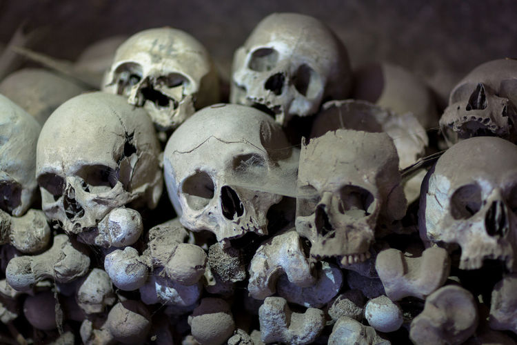 Napoli Close-up Day History Horror Human Body Part Human Bone Human Skeleton Human Skull Indoors  Large Group Of Objects Memorial People Skull Spooky War