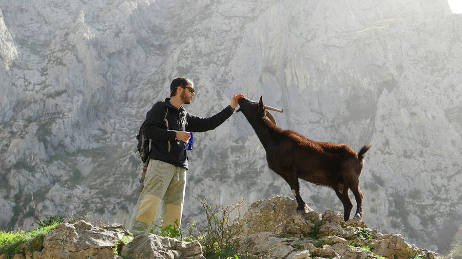 Low Angle View Of Hiker With Goat Standing Against Mountain