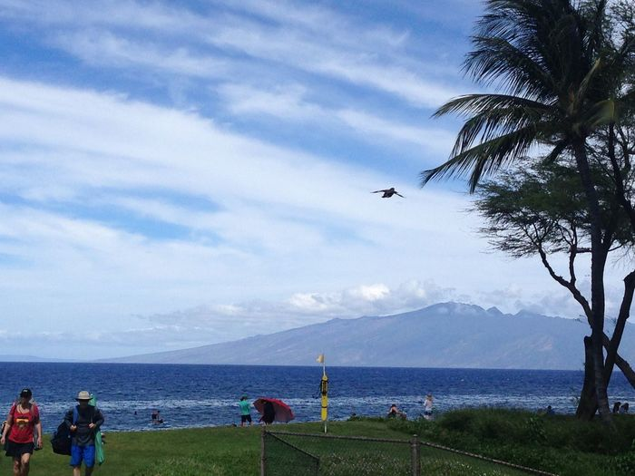 'is this love' Maui Hawaii Flying Beauty In Nature Scenics Cloud - Sky Mountain Outdoors Tranquil Scene Real People Day Airplane Sea Tree Large Group Of People Landscape People Aloha Enjoying Life Tadaa Friends Tadaa Community