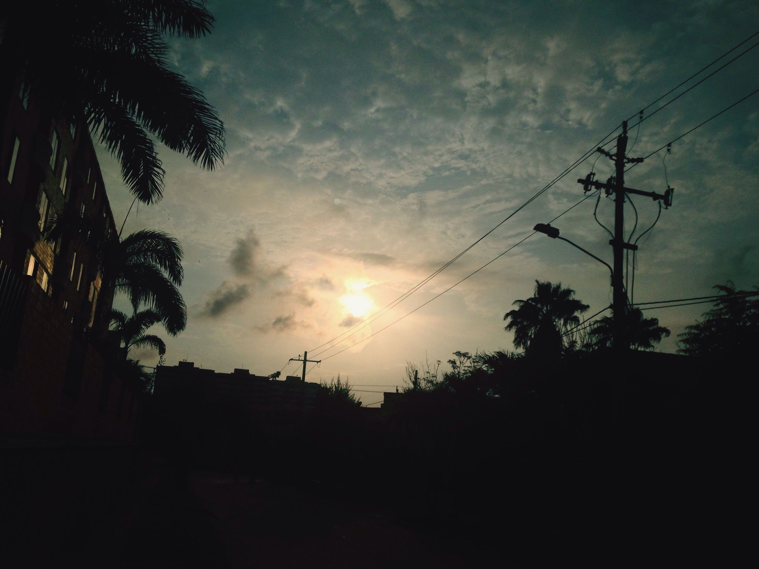 silhouette, sky, sunset, tree, low angle view, cloud - sky, power line, electricity pylon, cloudy, nature, sun, tranquility, cloud, beauty in nature, dusk, electricity, dark, scenics, tranquil scene, outdoors