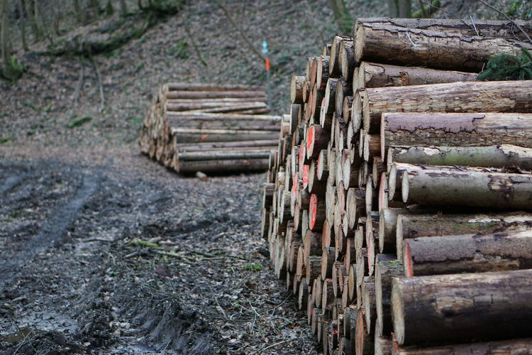 Wood - Material Stack Nature Day No People Timber Log Deforestation Focus On Foreground Large Group Of Objects Land Wood Outdoors Forest Architecture Firewood Tree Fuel And Power Generation Transportation Lumber Industry Pollution