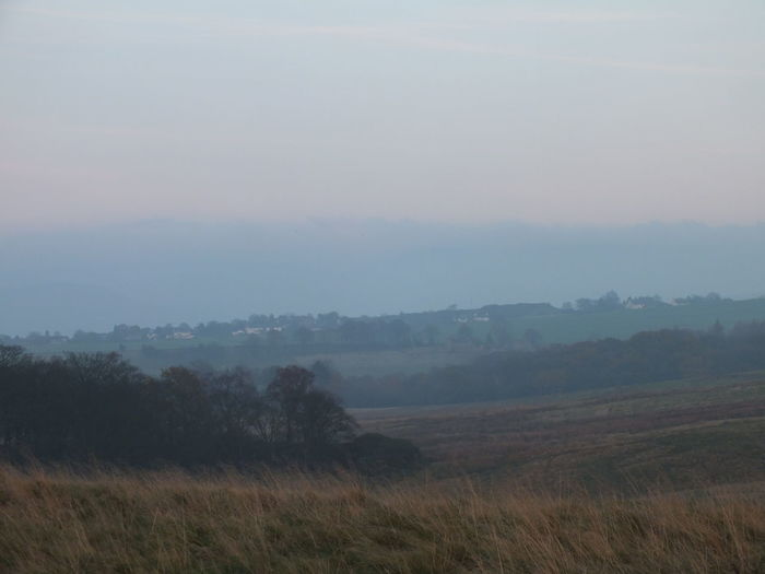 Autumn colours at Lyme Park, with misty sunset Autumn Beauty In Nature Dear Dusk Landscape Mist Misty Evening Nature No People Outdoors Stag Sunset Tranquility