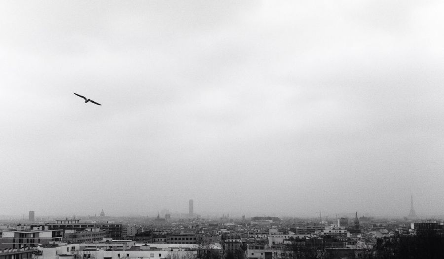 Blackandwhite Tour Eiffel Paris View Paris Je T Aime