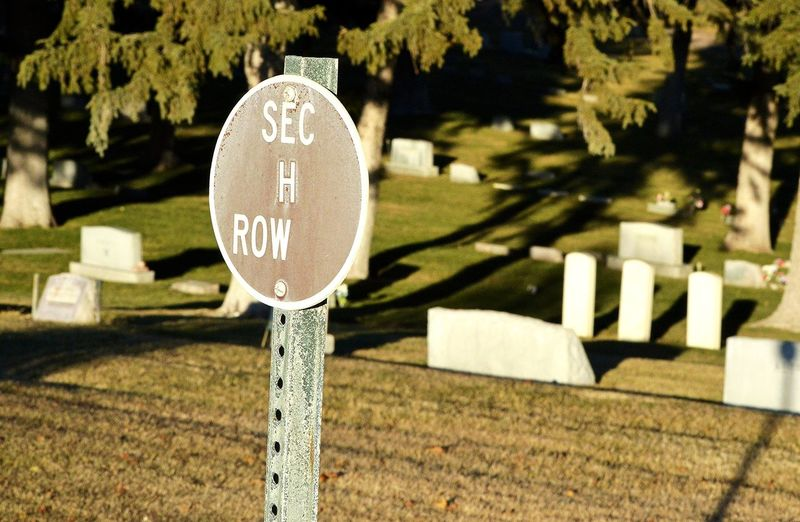 Row ? Outdoors Graveyard Shadows Sunshine Round Sign Metal Post Tree Text Close-up Capital Letter Cemetery Place Of Burial