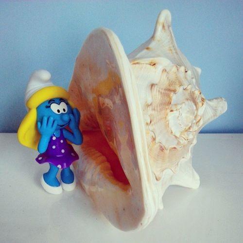 """Could you sing a song for me, Mr.Conch?"" Smurfette asked, ""I know you have the voice of the sea!"" Thesmurfs Schlumpf Smurfette  Sea conch singing songs thevoice ofthesea"